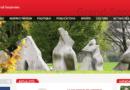 Site internet Grand-Saconnex