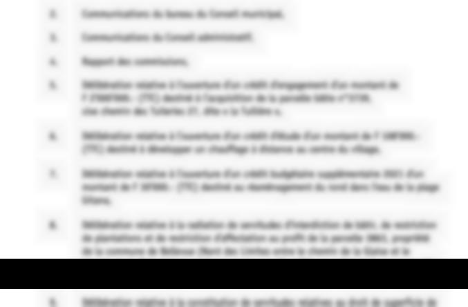 Conseil municipal de Bellevue